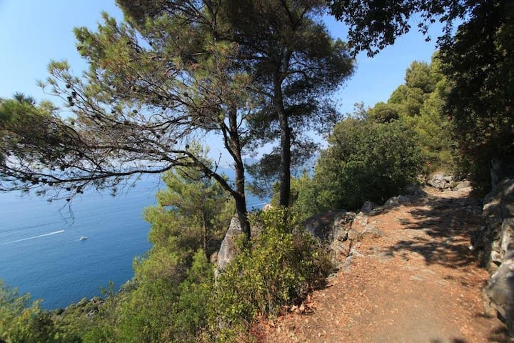 Villa annex with sea view and garden - Lerici - In-law