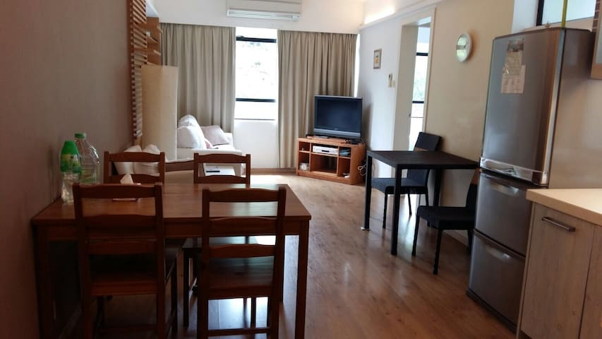 Convenient and cosy 1 br flat in DB