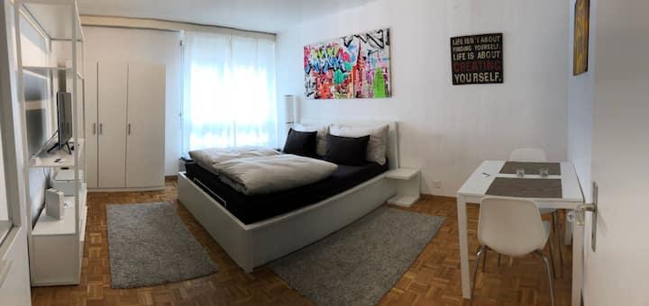 Great Studio in Zurich center #305
