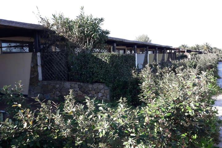 Porto Pollo, Residence Apartment Calapetralana