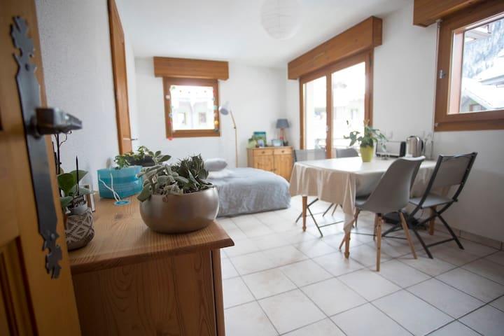 Appartement centre- garage-balcon vue Mt Blanc