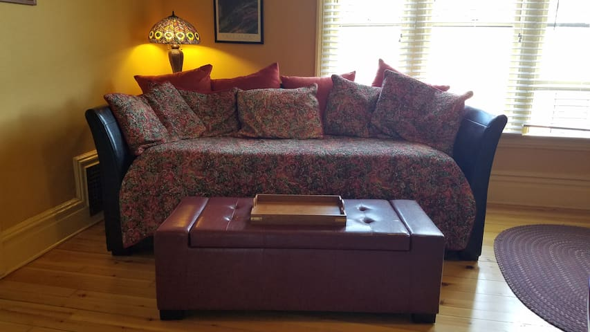 Leather Daybed with Trundle bed and leather ottoman