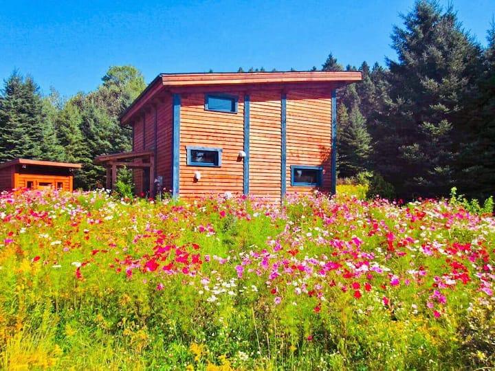 Maison Écologique, Idéale pour Famille