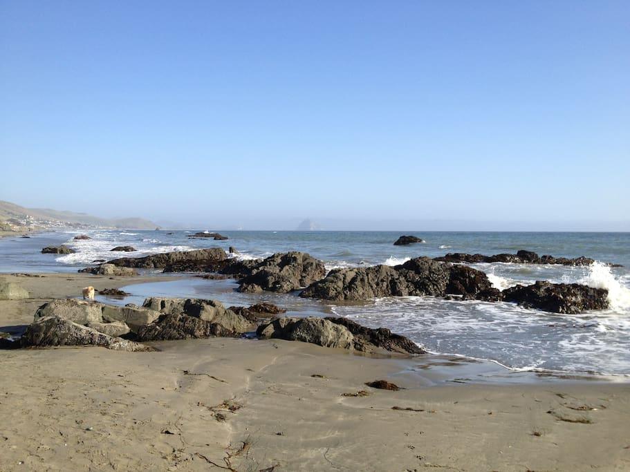 Coastal Beach Area