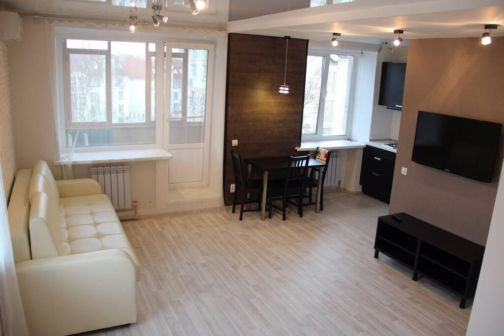 Уютная Студия с коженным диваном, на котором приятно посидеть и посмотреть телевизор.