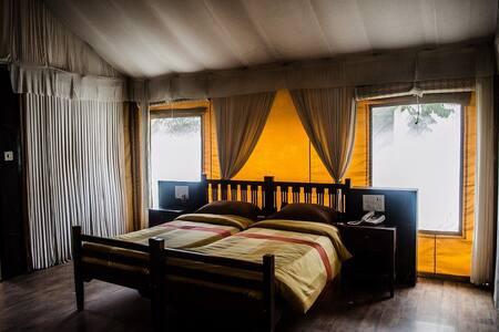 Luxury Swiss Tent