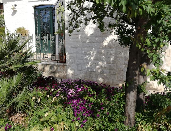 Country House - Camera Verde