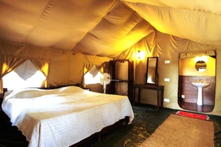 TIH Siramani River Camp, Keylong