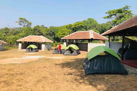 Camp in Nature's nest Coorg