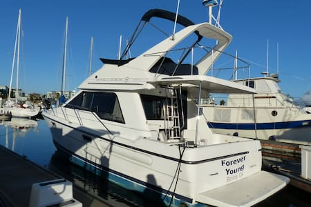 """Forever Young"" Bayliner 33' Power Boat - Redwood City - Boat"