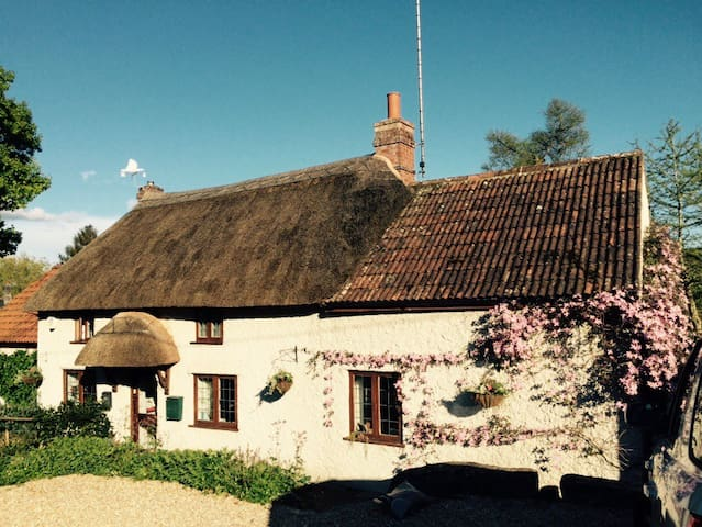 Private Room in Idyllic Country Cottage - Tatworth - Bed & Breakfast