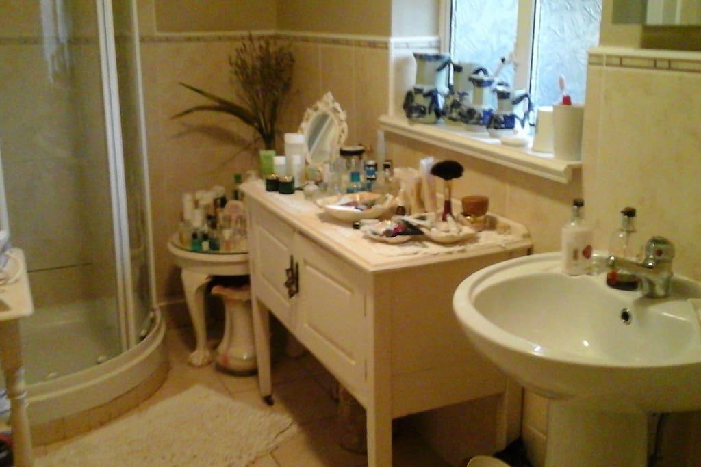 Shared bathroom with modern shower