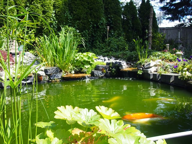 KOI POND AND TEA HOUSE WITH GARDENS