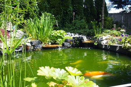 KOI POND AND TEA HOUSE WITH GARDENS - Mill Creek - 独立屋