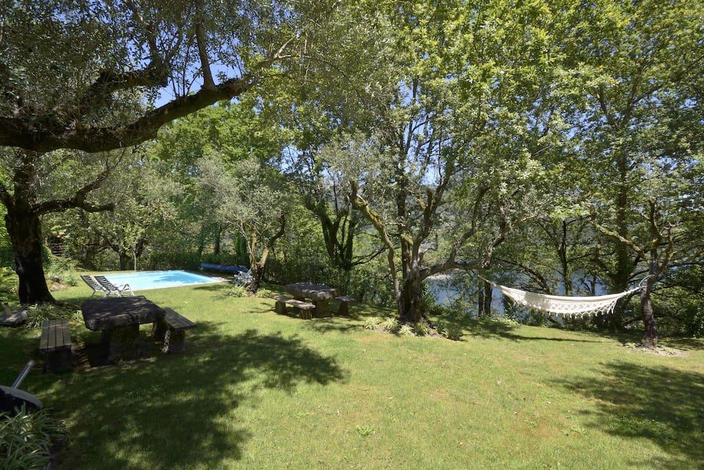 Garden / swimmingpool