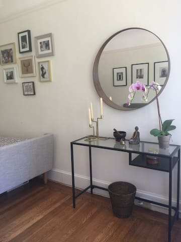 Spacious studio in Pacific Heights - San Francisco - Appartement