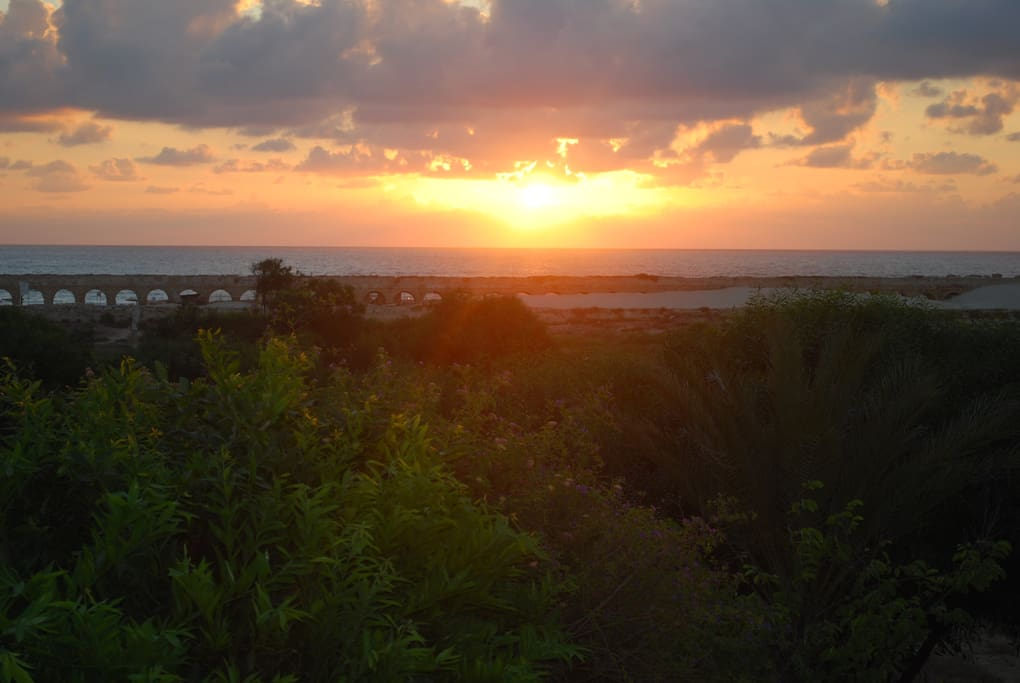 sunset from our terraece.  the house location on the Caesarea National Park