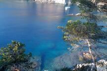 Clear waters in Tamariu