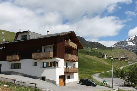 """Apartment """"Il Nocciolo"""" Trepalle"""