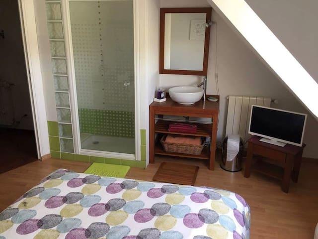 Coin salle de bain inclus dans la chambre et TV neuve