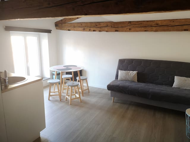 Castres : APPARTEMENT PLEIN CENTRE