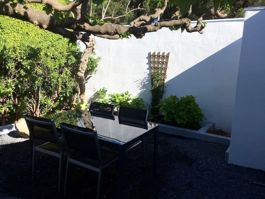 Jardin sous un murier platane