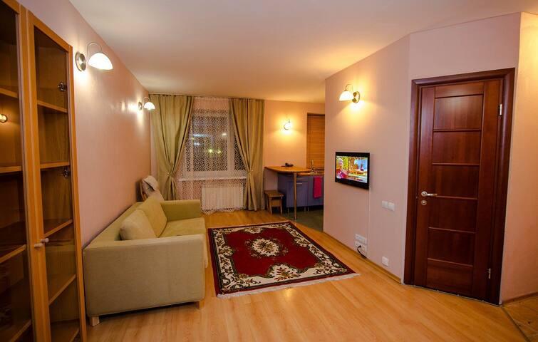 2 комнатная квартира на проспекте мира 100