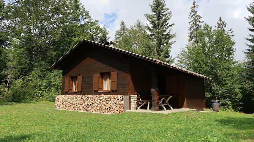 Buchner Hütte Sommer