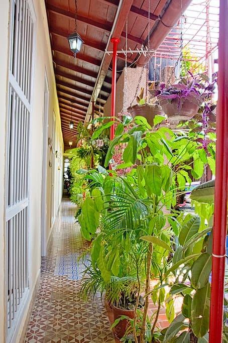 Jardín interior lleno de plantas ornamentales y espacio para la lectura y fumadores.