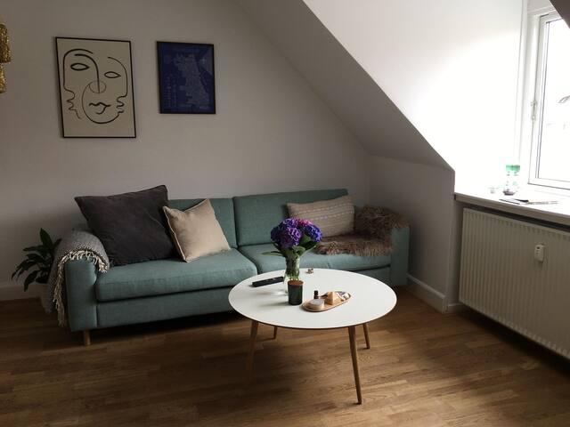 Cozy apartment in vibrant Vesterbro