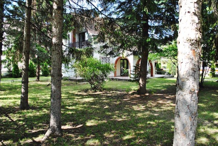 Endretro luxury at lake Balaton Siofok apart1