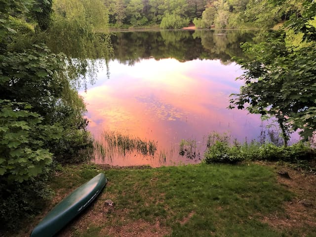 Serendipity on the Pond - New Listing w/King Bed!