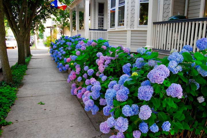 Amazing! Vacation Rentals Ocean Grove, Asbury Park