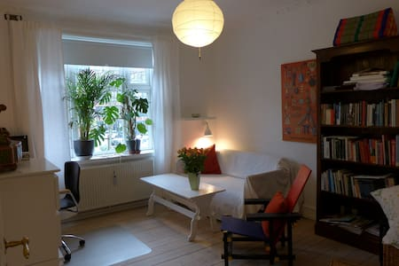 Two room snug apartment downtown