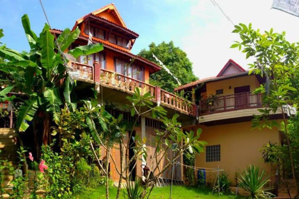 The House, up to the hill surrounding by the jungle