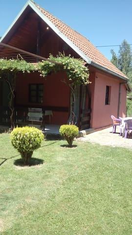 Villa Sofko-Ljubanishta,Ohrid