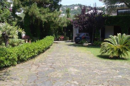Appartamento  in Villa con terrazzo - Villammare - Appartamento