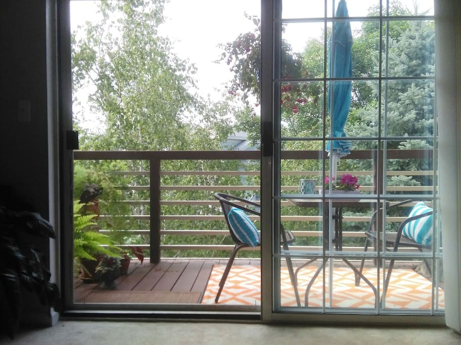 The deck is a window to the weather during the winter months.