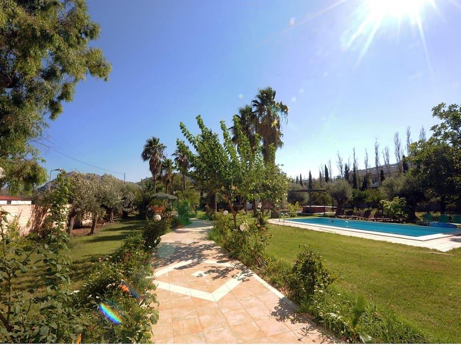 Walking path to villa Dimitris