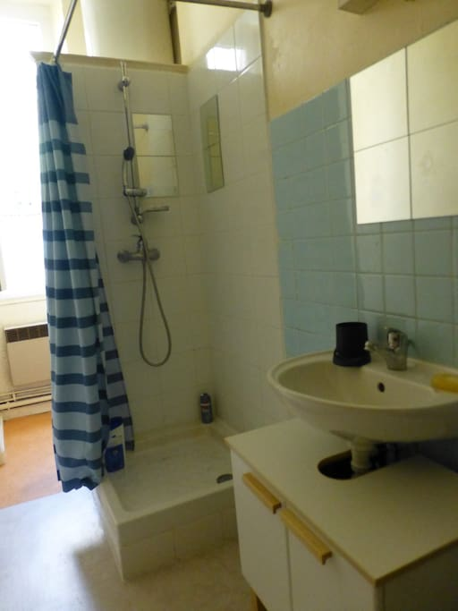 The bathroom with toilets behind the shower.