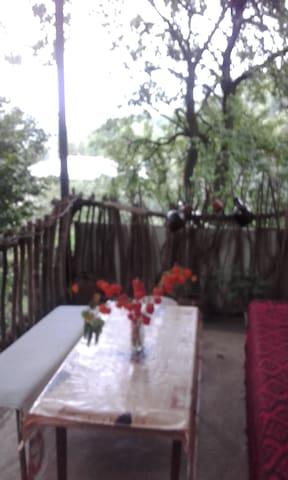 Liana's House
