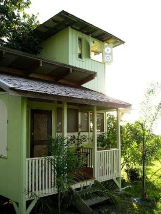 Iron wood shake roof.