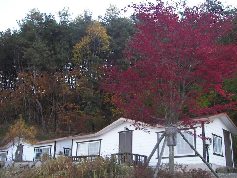가을의 풍경입니다.