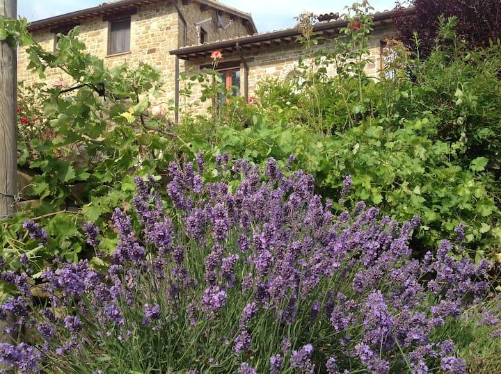 Casale di pregio Assisi