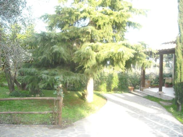 IL CASALETTO DI LUISA - Marino - Villa