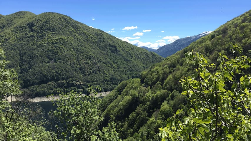 Nature, Mountain & Lake Retreat Home
