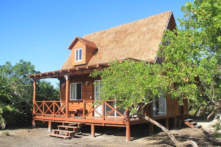 Casa Calamar