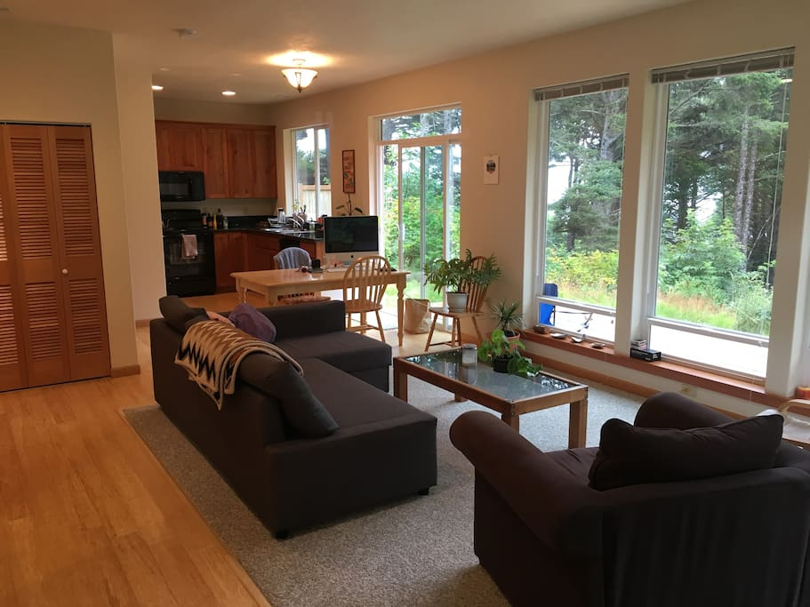 Living room. L-shaped couch can be turned into a bed.