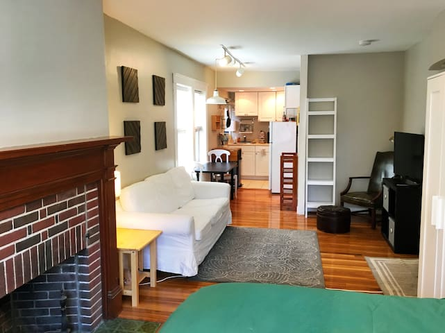 Bright, 1st-floor studio near Harvard/MIT - Cambridge - Apartamento