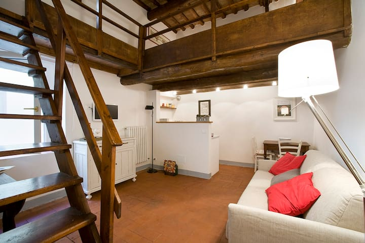 Characteristic apartment in the heart of Florence
